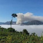 Bromo Solution FB_IMG_1476857532559-150x150 Paket Bromo Midnight dari Surabaya atau Malang Solution for your traveling paket bromo midnight tour