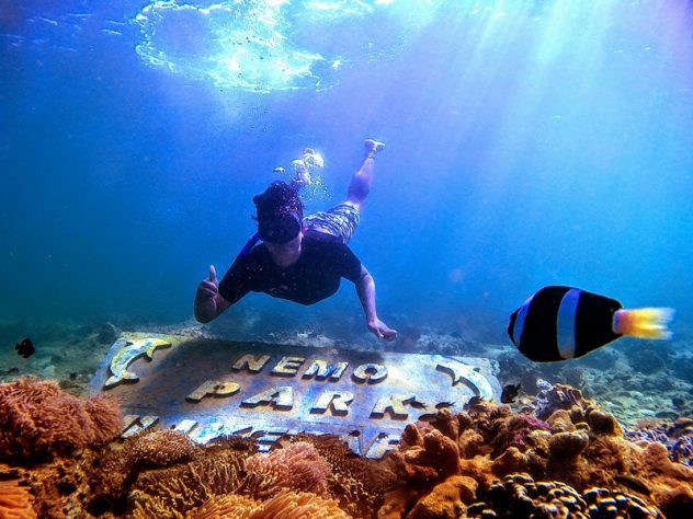 Mount Bromo Snorkeling Tour Packages