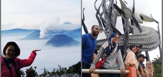 mount bromo surabaya city tour packages